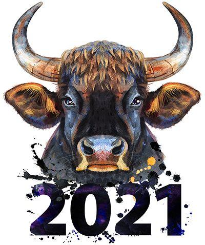 2021 metų kinų horoskopas