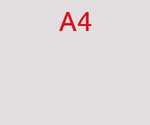A4 pavyzdinė