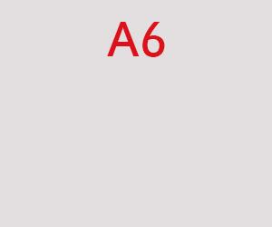 A6 pavyzdinė